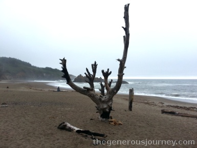 Fogarty Beach, OR © Paul H. Byerly