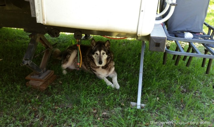 Roxy under the RV © Paul H. Byerly