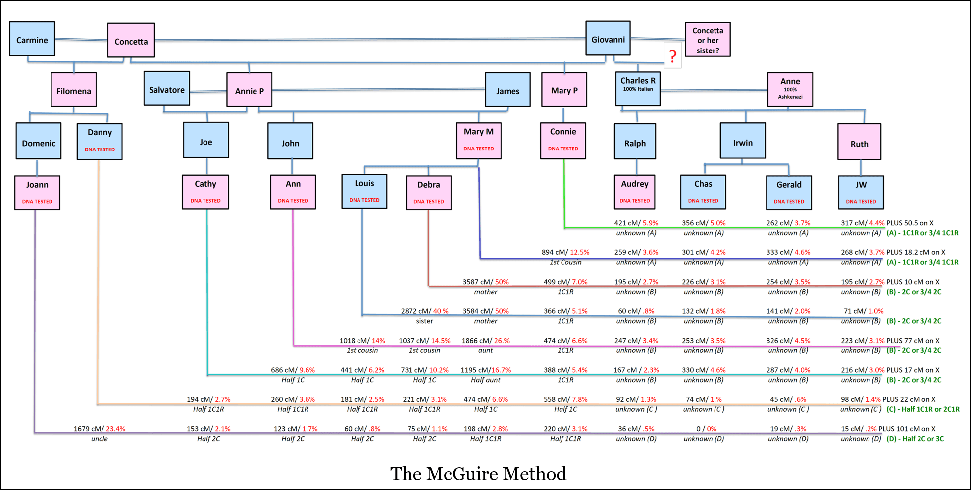 heredity family tree diagram truck to trailer wiring 2014 dodge ram plug car 7 way 5 guest post the mcguire method  simplified visual dna