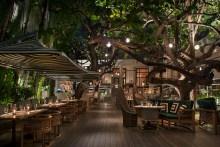 Raleigh-Life-Restaurant-Michael-Schwartz