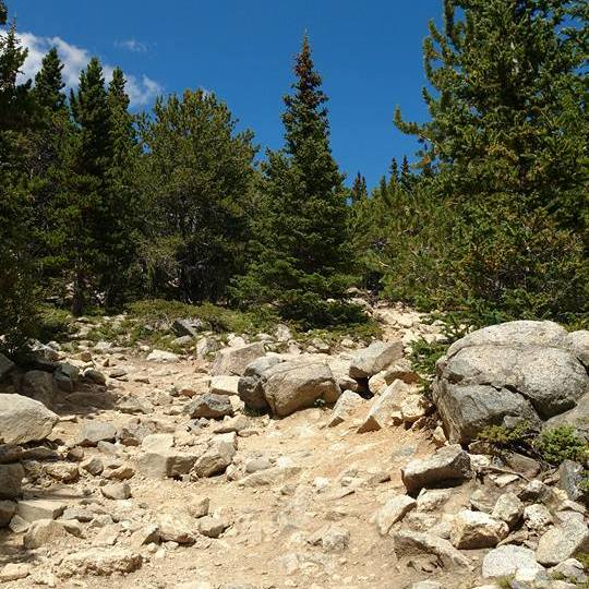Trail leading to Saint Mary's Glacier