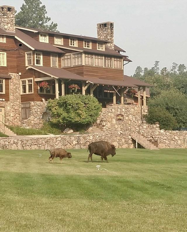 State Game Lodge, Black Hills hiking trip.