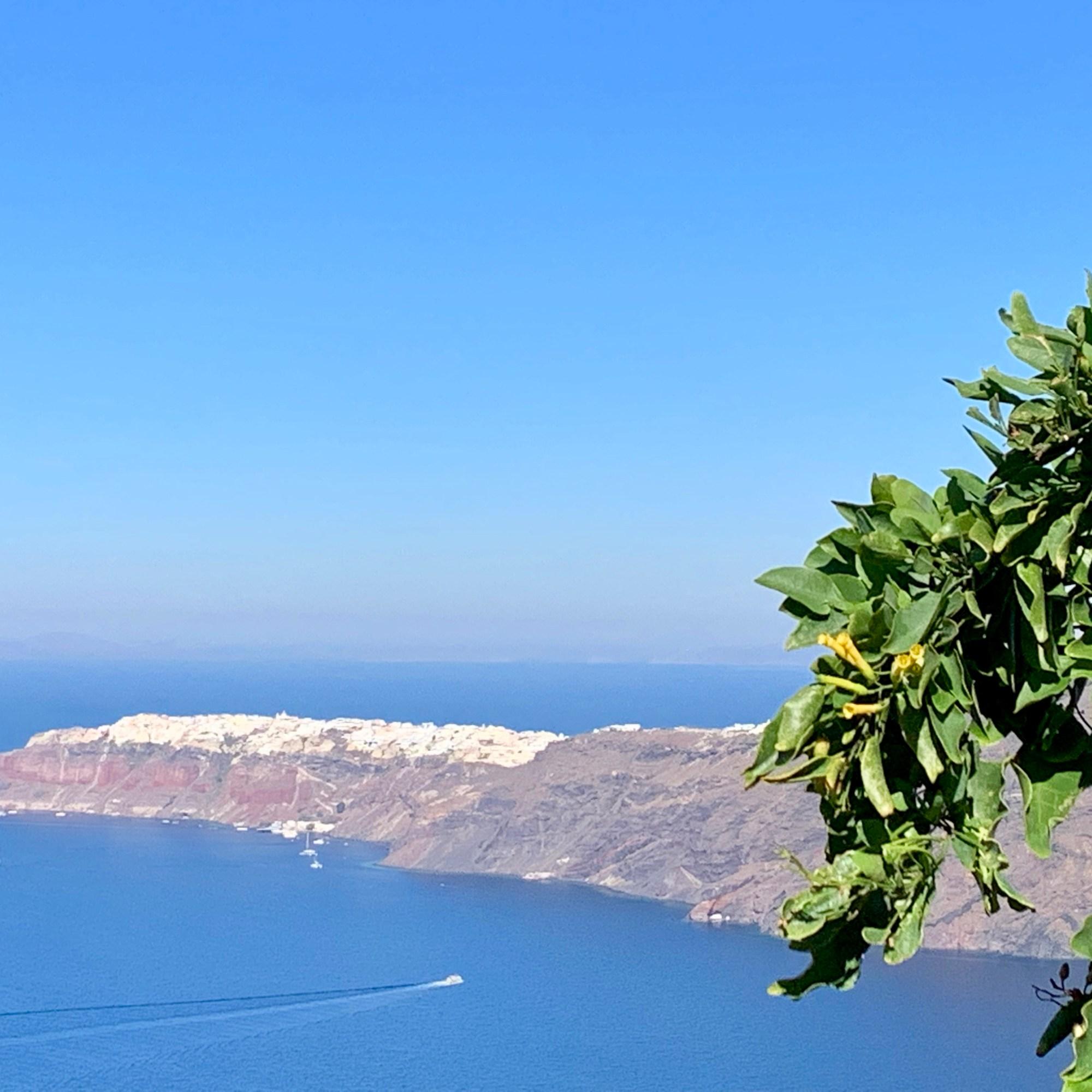 Path to oil Santorini