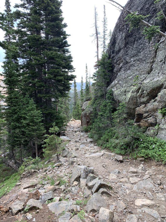 Trail to Fern Lake