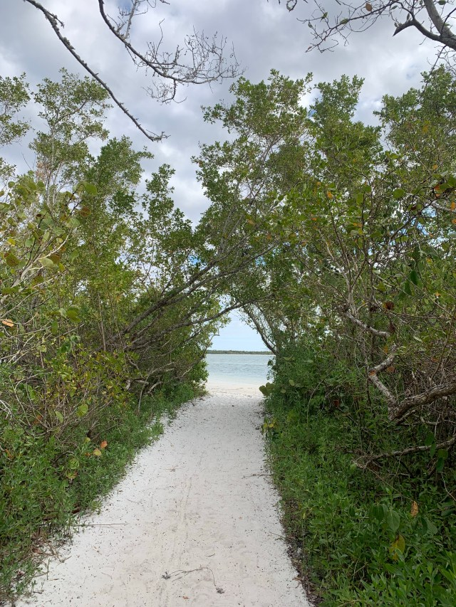 Bowditch Point Park Fort Myers Beach Florida