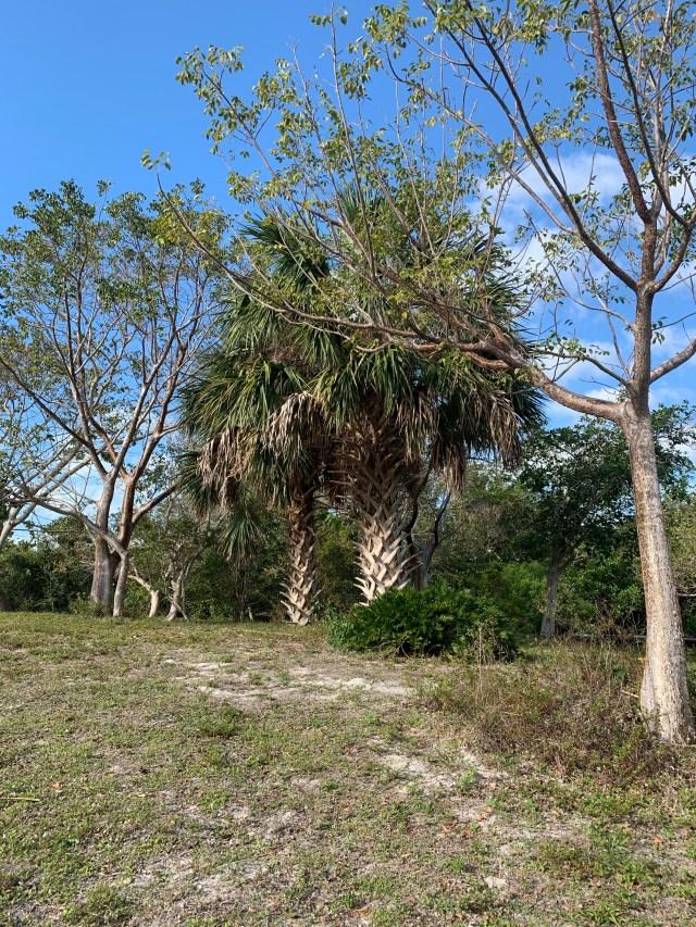 Bowditch Point Park Florida
