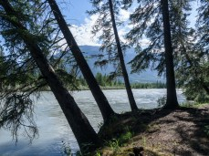 High water flows on the Bow River