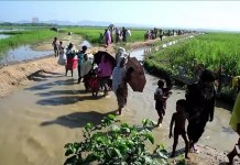 Rohingya refugees of Myanmar entering Bangladesh