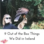 out of the box ireland