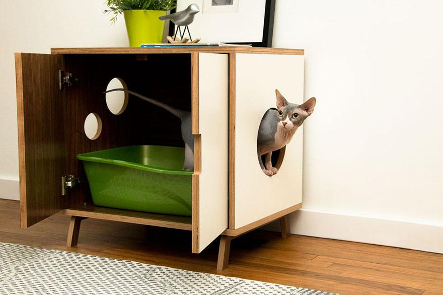 kedi kabini