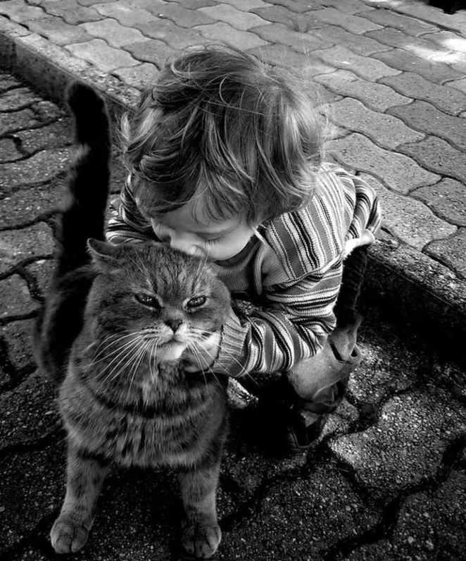 kediyi yiyen çocuk