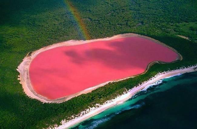 Hillier Gölü - Pembe Göl