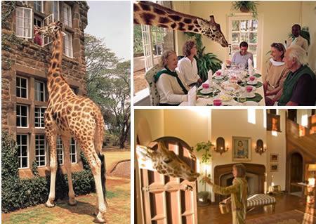 Zürafa Malikanesi