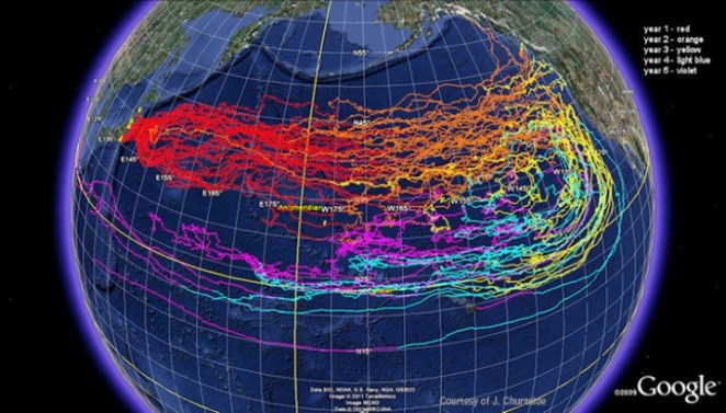 fukushima-radyasyon