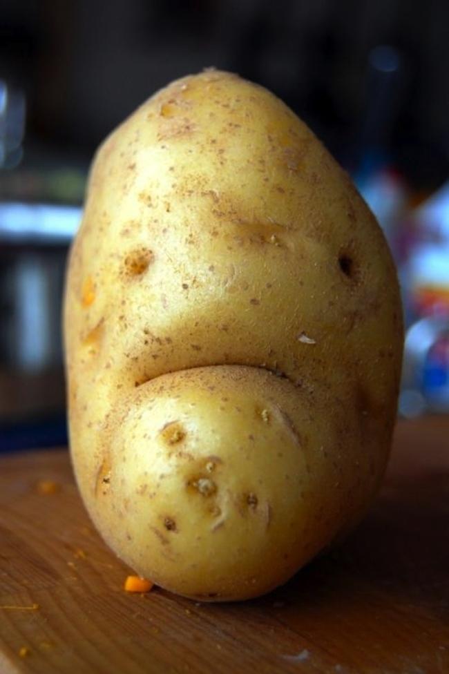 ilginç patates