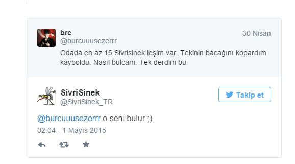 sivrisinek_komik