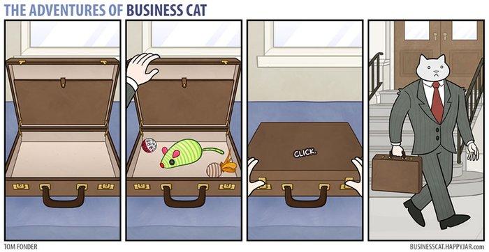 kedi çantası