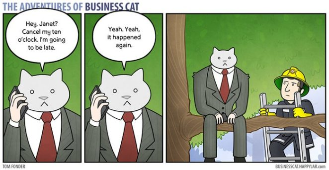kedi ağaçta kalmış