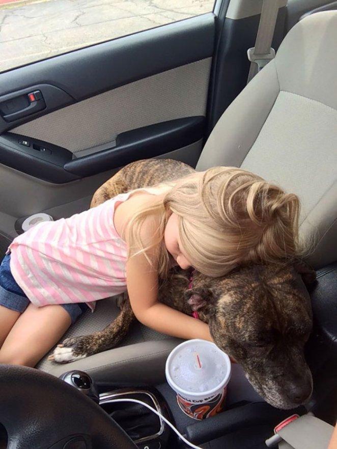 aşı olacak hayvanına moral veren kız