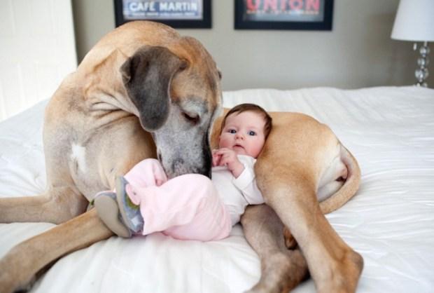 çocuk sahibi olmak 10