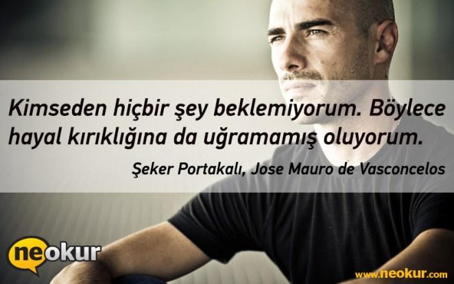 Jose Mauro de Vasconcelos - Şeker Portakalı