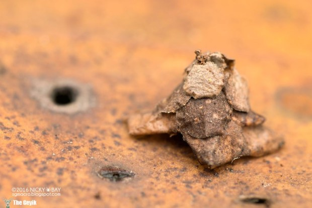 7-mysterious-structures-from-the-worlds-smallest-architects-4__880