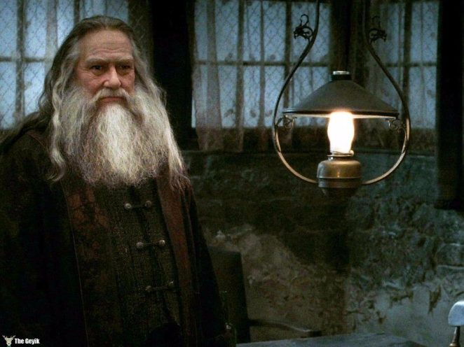 ciarn-hinds-played-aberforth-dumbledore-albus-brother-in-the-final-harry-potter-movie