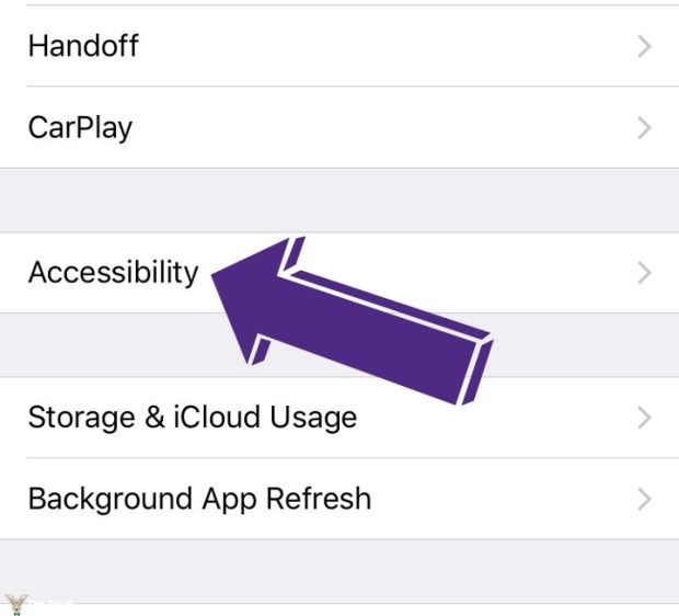 iphonefix-accessibility
