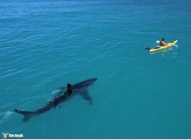 yuzmekten-korkmanizi-saglayacak-deniz-fotograflari-1