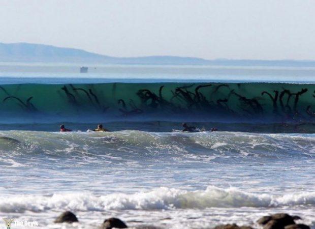 yuzmekten-korkmanizi-saglayacak-deniz-fotograflari-10
