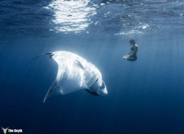 yuzmekten-korkmanizi-saglayacak-deniz-fotograflari-7
