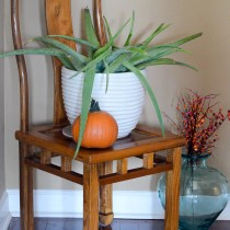 How to Use Houseplants in Fall Decor - Fall Home Tour - Fall Decorations - Indoor Plants - The Gifted Gabber
