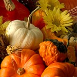 Lists We Love: The Ultimate Resource for Thanksgiving by the Better Mom