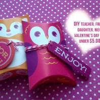 DIY Valentine $5