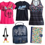 Celebrating Disney Land : Disney Park Gifts