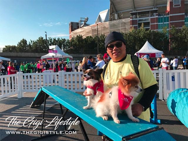 Sissy and Nala at the made-up dog run