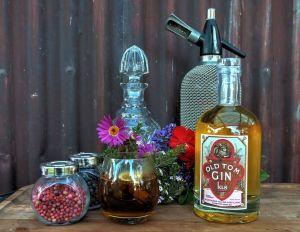 Kis gin review