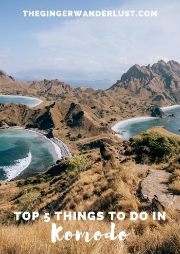 Top 5 Things to do in Komodo (1)