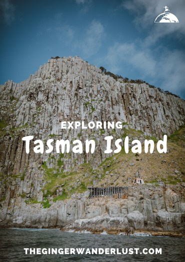 Copy of tasman island pin