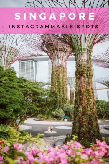 Here are the 21 Most Instagrammable places in Singapore that you should include in your itinerary. These places include a mix of the top things to do in Singapore as well as a few new and unique spots. Don't miss these insta-worthy spots if you are visiting and traveling to Singapore, and read more to find out my top tips on the best time to go.