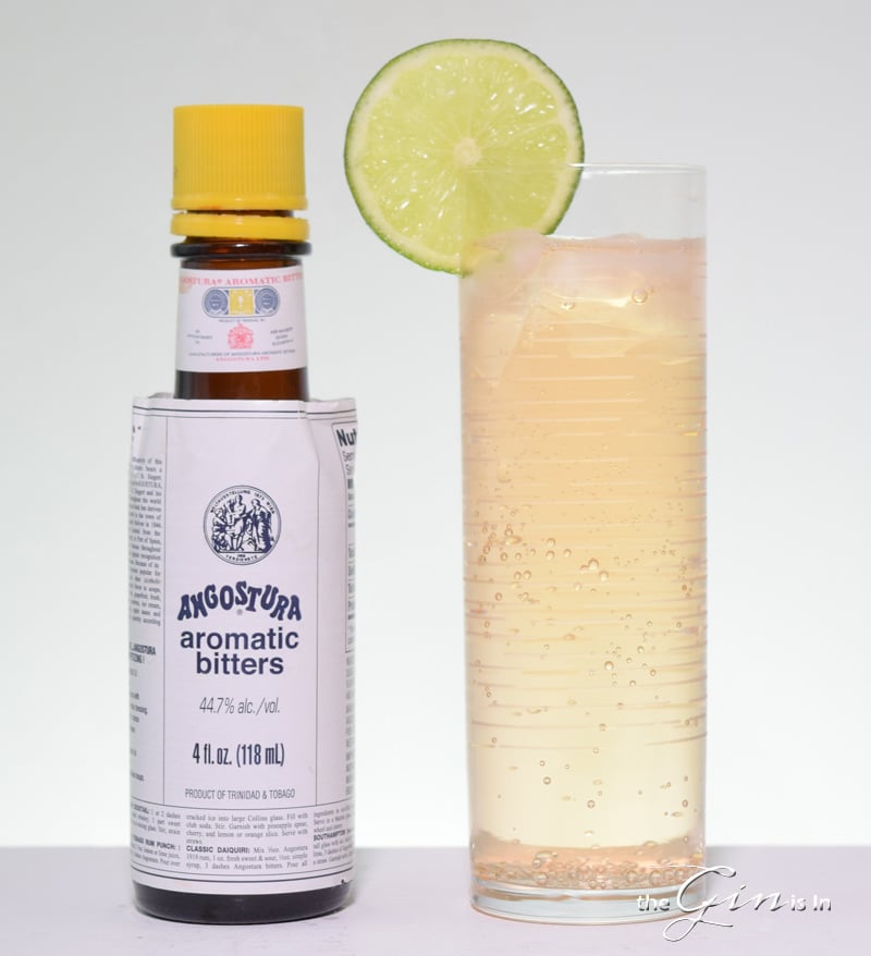 Angostura Gin and Tonic