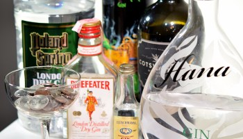 Diy gin kits how to make a beter diy gin top 10 gins under 20 solutioingenieria Gallery