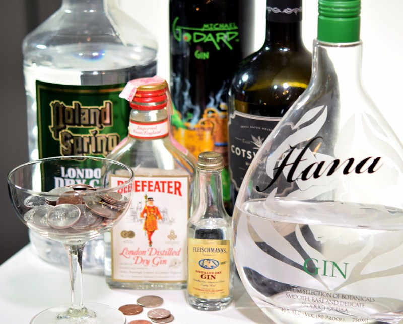 Looking for gins under $20