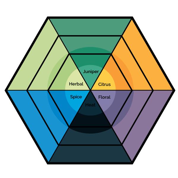 Gin Flavor Diagram