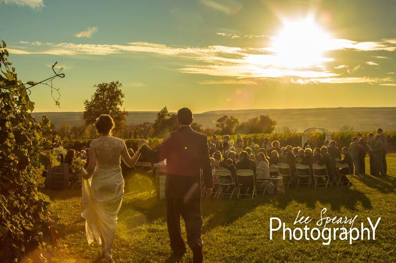 Walking into the vineyard at sunset