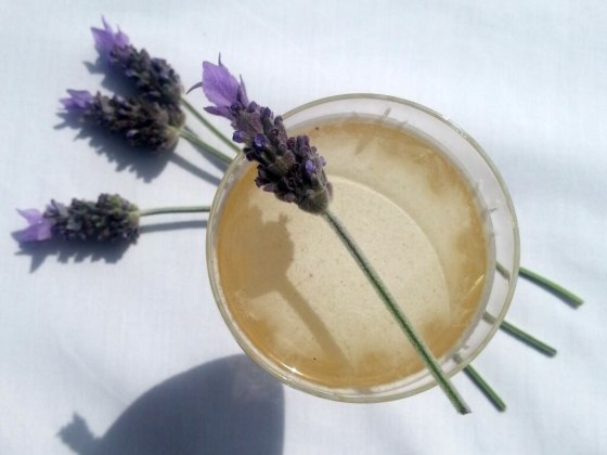 bees-knees-cocktail