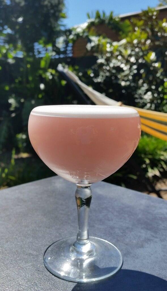 clover-club-cocktail