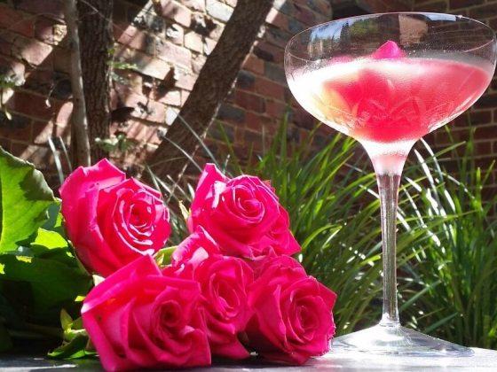 rosie-lee-cocktail