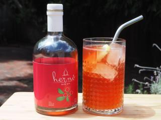 herno gins sloe gin fizz