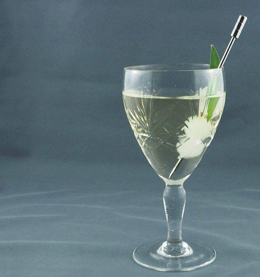 Ironbark Wattleseed gin Gibson Martini